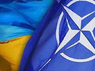 Ukrainians want security: only 22% of citizens currently oppose NATO membership